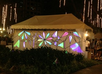 Epson Powers Projection Mapping Installation at Art in the Park